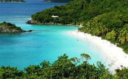 Trunk bay beach. Detail of trunk bay st jonh us vi beatiful beach Royalty Free Stock Image