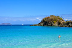 Trunk bay and snorkeler. Man getting ready to snorkel, trunk bay, us virgin islands Royalty Free Stock Photo