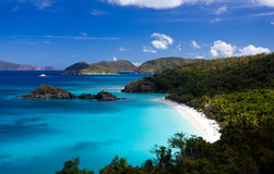 Trunk Bay on St John Stock Images