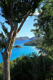 Trunk Bay in St John Stock Photography