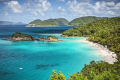 Trunk Bay St John Stock Photography