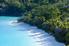 Trunk bay, usvi. Low aerial view of trunk by, us virgin islands Royalty Free Stock Image