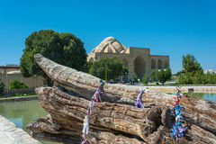 The trunk of an old mulberry tree in the memorial complex Bahoud Stock Photos