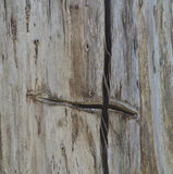 Trunk of an old tree with cross Stock Photo