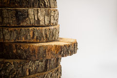 Trunk sections Royalty Free Stock Photos