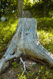 Trunk of a tree. With a face drawn Royalty Free Stock Photo