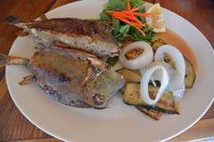 Trunkfish local bourré de Mahi Mahi Images stock