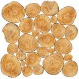 Trunks Stock Image