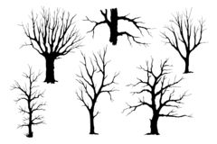Trunks of trees vector silhouette set. Trees without leaves, hand drawing silhouette. Trunks and branches of different types of trees, vector set stock illustration