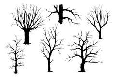 Trunks of trees vector silhouette set stock illustration