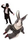 Truque mágico azarado Imagem de Stock