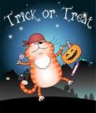 Truque ou tratamento engraçado do gato Imagem de Stock Royalty Free