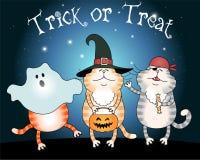 Truque ou tratamento engraçado dos gatos Fotos de Stock