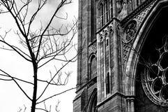 Truro-Kathedrale, Cornwall, England Stockfoto