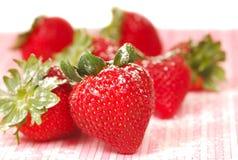 truskawka świeży sproszkowany cukier fotografia royalty free