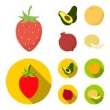 Truskawka, jagoda, avocado, pomarańcze, granatowiec Owoc ustawiać inkasowe ikony w kreskówce, mieszkanie symbolu stylowy wektorow Obraz Royalty Free