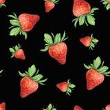Truskawka na czarnym tle Akwarela rysunek truskawkowe jagody Handwork rysujący Akwareli truskawki bezszwowy wzór Zdjęcia Stock
