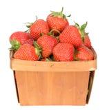 truskawka organicznych Obrazy Royalty Free