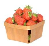 truskawka organicznych Zdjęcia Royalty Free