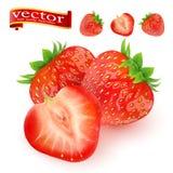 truskawka Słodka owoc 3d wektorowe ikony ustawiać realistyczna ballons ilustracja soczyste dojrzałe truskawki na białym tle Fotografia Royalty Free