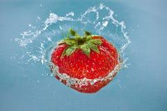 Truskawka spada wewnątrz woda Zdjęcie Stock