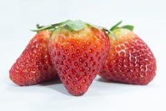 truskawka tropikalne świeże owoc jagodowe obrazy stock