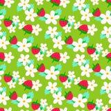 Truskawka wzór z kwiatami Zdjęcie Stock