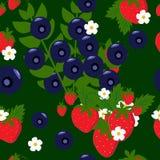 Truskawki i czarne jagody z kwiatu bezszwowym tłem royalty ilustracja