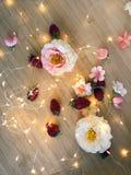 Truskawki i kwiaty Zdjęcie Stock