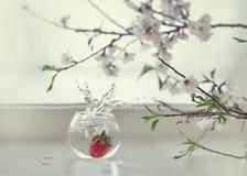 Truskawki i kwiaty Zdjęcia Royalty Free