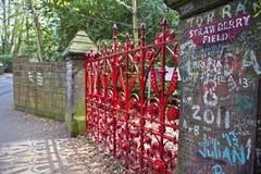 Truskawki pole w Liverpool Fotografia Royalty Free