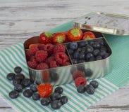 Truskawki, rasberries, czarne jagody Zdjęcia Royalty Free