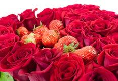 Truskawki w różach Obraz Royalty Free