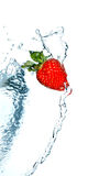 truskawki woda obrazy royalty free