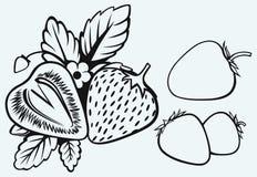 Truskawki z liśćmi Obrazy Stock