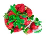 Truskawkowa jagoda z zielonym liściem i mennicą na bielu plecy Zdjęcie Stock
