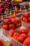 Truskawkowe i mieszane jagody Fotografia Royalty Free