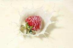 truskawkowe mleko Obraz Stock