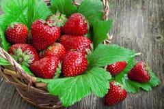 Truskawkowe owoc Zdjęcie Stock