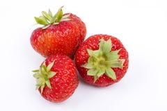 Truskawkowe owoc na białym tle Obraz Royalty Free