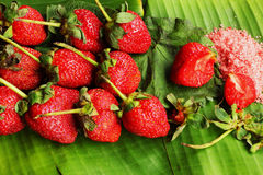 Truskawkowe owocowe jagody i śliwkowy kumberland - Solankowe Zdjęcie Royalty Free
