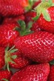 Truskawkowe truskawki Sterta świeży czerwony owocowy tło Truskawki zbliżenia deseniowa tekstura Zdjęcie Royalty Free