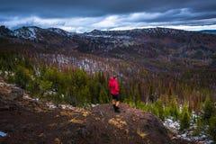 Truskawkowy góry pustkowia Malher las państwowy Obraz Stock