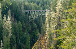 Truss Arch Bridge. High Steel Bridge Over Forest floor Stock Photo