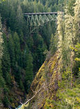 Truss Arch Bridge. High Steel Bridge Over Forest floor Royalty Free Stock Image