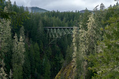 Truss Arch Bridge. High Steel Bridge Over Forest floor Royalty Free Stock Photography