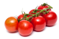 Truss of red tomatoes Royalty Free Stock Photos