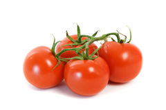 Truss Tomatoes Royalty Free Stock Photos
