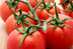 Truss tomatoes Royalty Free Stock Photography