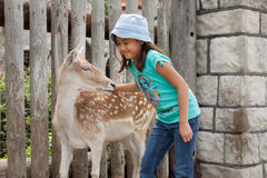 Trust. A deer and a little girl looking at each other Royalty Free Stock Photo